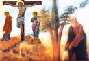 Ιερουσαλήμ: Η Μονή του Τιμίου Σταυρού  (Βίντεο)